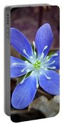 Hepatica Blue Portable Battery Charger