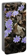 Hepatica Portable Battery Charger