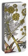 Herbal: Fennel, 1819 Portable Battery Charger