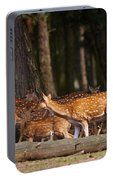 Herd Of Deer In A Dark Forest Portable Battery Charger