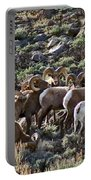 Herd Of Horns Portable Battery Charger