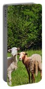 Here Is Looking At Ewe Portable Battery Charger