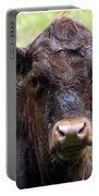 Here's Looking At You Portable Battery Charger