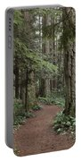 Heritage Forest Portable Battery Charger
