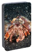 Hermit Crab With Anemone Portable Battery Charger