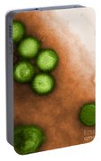 Herpes Simplex Virus Tem Portable Battery Charger