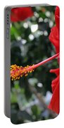 Hibiscus 2685 Portable Battery Charger