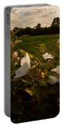 Hibiscus At Sunrise  Portable Battery Charger