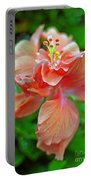Hibiscus IIi Portable Battery Charger