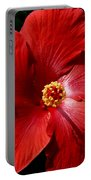 Hibiscus Landscape Portable Battery Charger