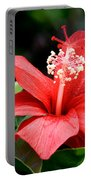 Hibiscus Le'a - A Large Red Hibiscus Flower Bloom Portable Battery Charger