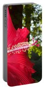 Hibiscus - Lord Baltimore Portable Battery Charger