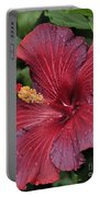 Hibiscus Night Fire 2 Of 2 Portable Battery Charger