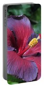 Hibiscus Night Fire Portable Battery Charger