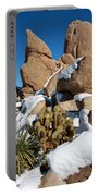 Hidden Valley Snow Portable Battery Charger