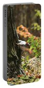 Hide And Seek Portable Battery Charger