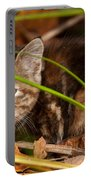 Hiding In The Grass Portable Battery Charger