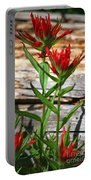 High Country Wildflowers Portable Battery Charger