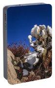 High Desert Snow 2 Portable Battery Charger
