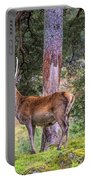 Highland Stag Portable Battery Charger