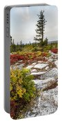 Highlands Of West Virginias Dolly Sods Portable Battery Charger