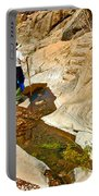 Hiker On Window Trail In Chisos Basin In Big Bend National Park-texas   Portable Battery Charger