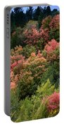 Hill Side Colors Portable Battery Charger