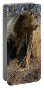 Hillside Grizzly Portable Battery Charger