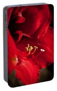 Hippeastrum Portable Battery Charger