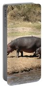 Hippo Mum And Calf Portable Battery Charger