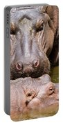 Hippopotamus In Water Portable Battery Charger