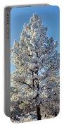 Hoar Frost Ponderos Pine Tree, Sundance Portable Battery Charger