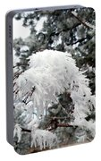 Hoarfrost 19  Portable Battery Charger