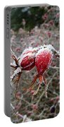 Hoarfrost 3 Portable Battery Charger