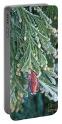 Hoarfrost On Pine Bough Yosemite National Park Portable Battery Charger