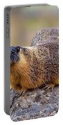 Hoary Marmot  Portable Battery Charger