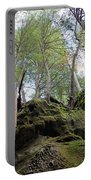 Hocking Hills Moss Covered Cliff Portable Battery Charger