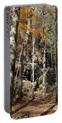 Hocking Hills Trees Portable Battery Charger