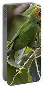 Hoffman's Conure Portable Battery Charger