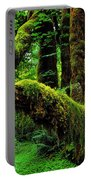 Hoh Rainforest Portable Battery Charger