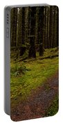 Hoh Rainforest Road Portable Battery Charger