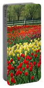 Holland Tulip Fields Portable Battery Charger