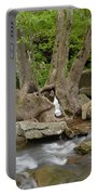 Hollow Tree Portable Battery Charger