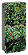 Holly Bush - Portable Battery Charger