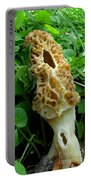 Holy Morel Portable Battery Charger