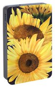 Homage To The Sun Portable Battery Charger