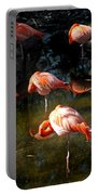 Homosassa Springs Flamingos 5 Portable Battery Charger