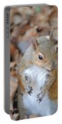 Homosassa Springs Squirrel 2 Portable Battery Charger