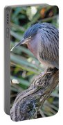 Homosassa Springs Waterfowl 10 Portable Battery Charger