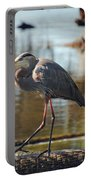 Homosassa Springs Waterfowl 8 Portable Battery Charger